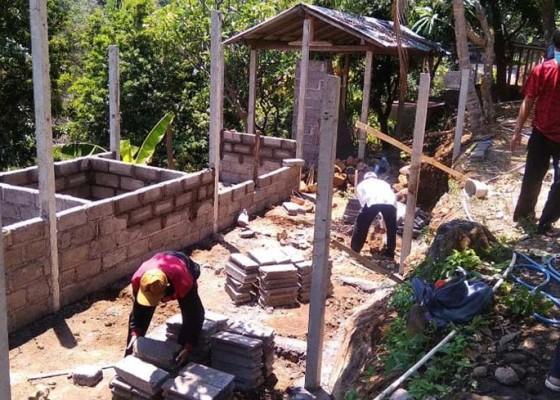 Nusabali.com - desa-sidetapa-kembangkan-sentra-agropreneurship-tani-ternak-multilayer-diinisiasi-mahasiswa-undiksha