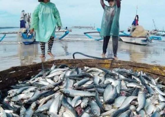 Nusabali.com - kkp-foi-kampanye-gencarkan-konsumsi-ikan
