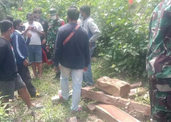 Nusabali.com - geledah-rumah-warga-petugas-amankan-puluhan-batang-kayu