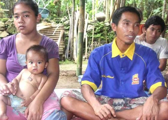 Nusabali.com - bocah-tewas-tertimpa-pelepah-pohon-kelapa