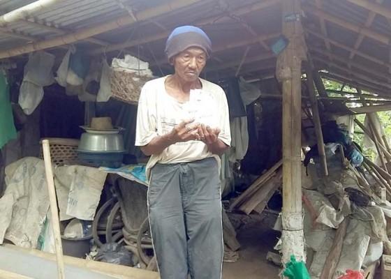 Nusabali.com - istri-kawin-lagi-pekak-netra-hidup-sendiri-di-gubuk-reot