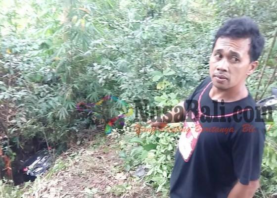 Nusabali.com - mobil-wna-india-terjun-ke-jurang-gitgit-3-terluka