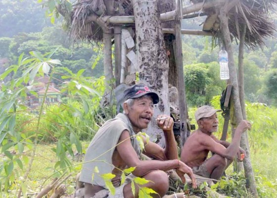 Nusabali.com - diskusi-jelang-musim-tanam
