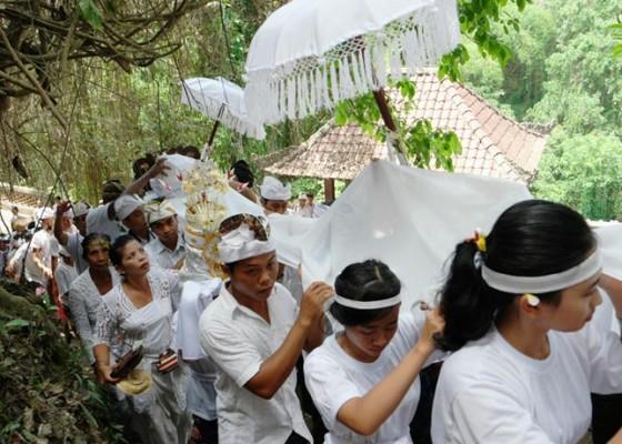 Nusabali.com - buntut-peristiwa-gaib-keluarnya-tirta-dan-api-dari-pohon-pule