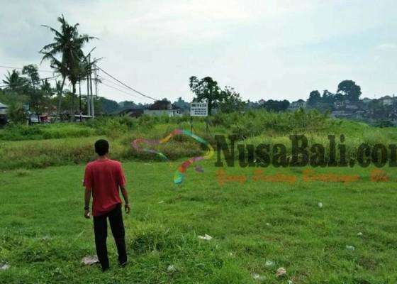 Nusabali.com - krama-sanggulan-ancam-demo-bupati
