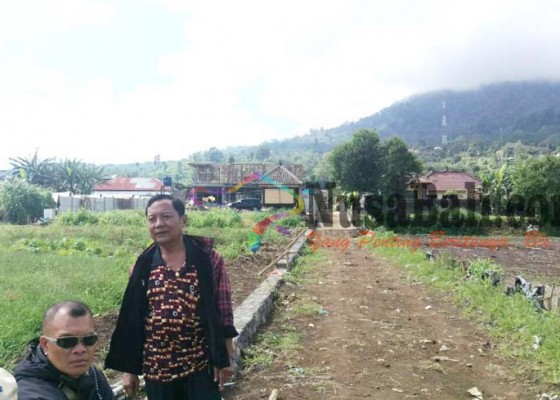 Nusabali.com - melanggar-jalur-hijau-pembangunan-rumah-di-pancasari-diprotes