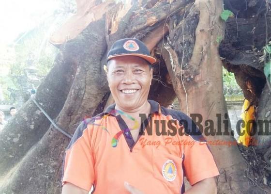 Nusabali.com - bencana-pergeseran-tanah-intai-buleleng