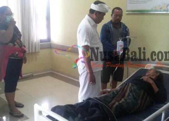 Nusabali.com - 19-krama-suspect-meningitis-karena-konsumsi-olahan-daging-babi-yang-kurang-bagus