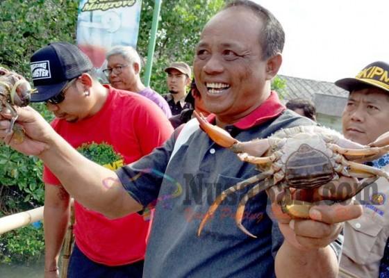 Nusabali.com - penyelundupan-kepiting-bakau-digagalkan