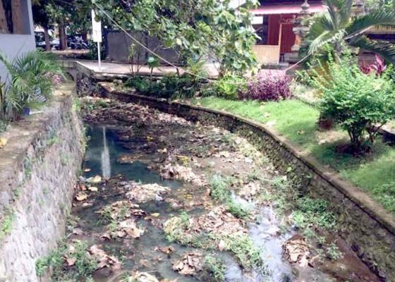Nusabali.com - sedimenasi-sungai-di-depan-kantor-camat-kutsel-meninggi