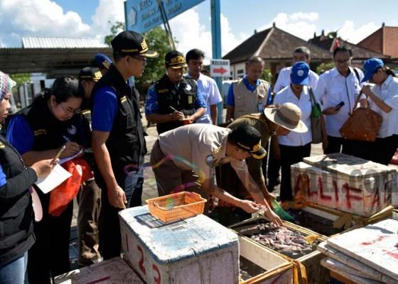 Nusabali.com - ikan-di-pasar-kedonganan-diuji-formalin