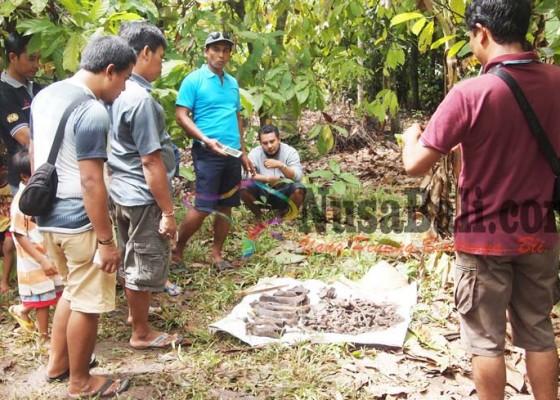 Nusabali.com - geger-temuan-tulang-manusia-di-sumur-tua