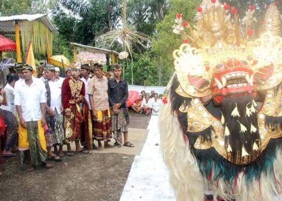 Nusabali.com - 12-warga-naur-sesangi-setelah-lolos-dari-maut