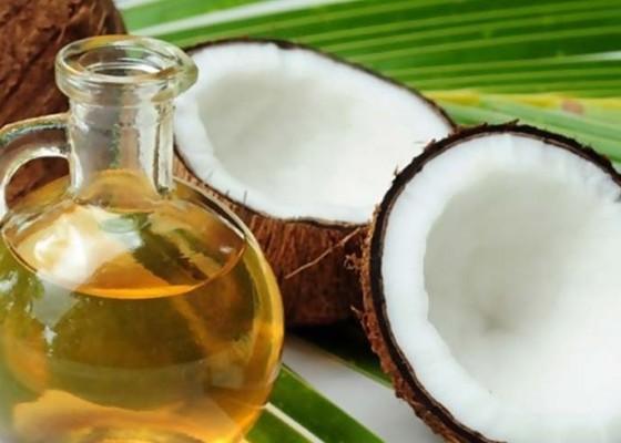 Nusabali.com - jerman-minati-minyak-kelapa-bali