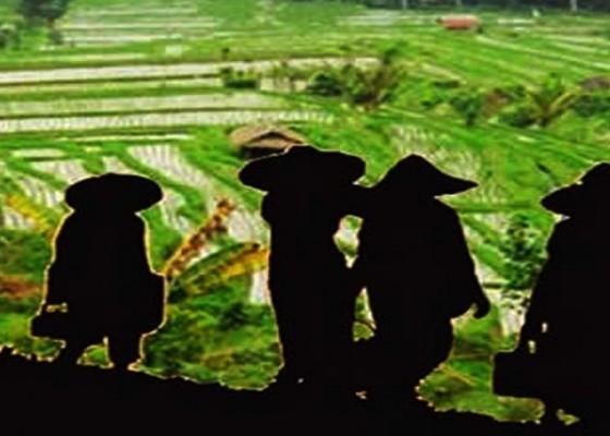 Nusabali.com - dprd-minta-matangkan-pasca-panen