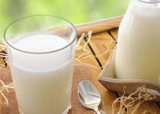 Nusabali.com - 80-persen-kebutuhan-susu-di-indonesia-masih-impor