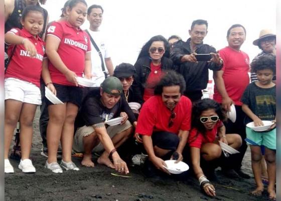 Nusabali.com - roy-jeconiah-lepas-tukik-di-pantai-keramas