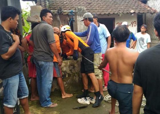 Nusabali.com - balita-tercebur-ke-sumur-15-meter