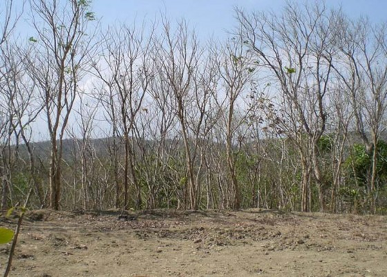 Nusabali.com - cuaca-di-utara-gunung-agung-masuk-musim-kering