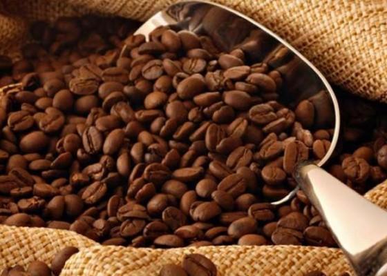 Nusabali.com - kopi-rajai-ekspor-produksi-perkebunan