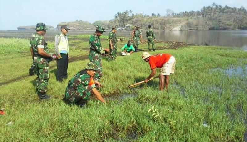 www.nusabali.com-tni-tanam-mangrove-di-pantai-klecung