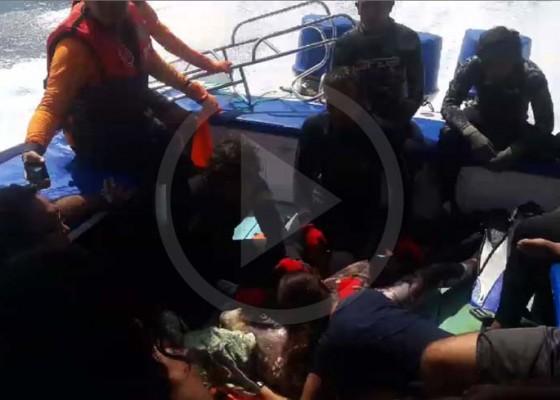 Nusabali.com - breaking-news-tim-penyelam-temukan-jenasah-nicolas-di-kedalaman-50-meter