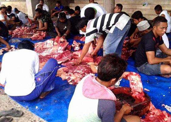 Nusabali.com - warga-non-muslim-juga-dapat-daging-kurban