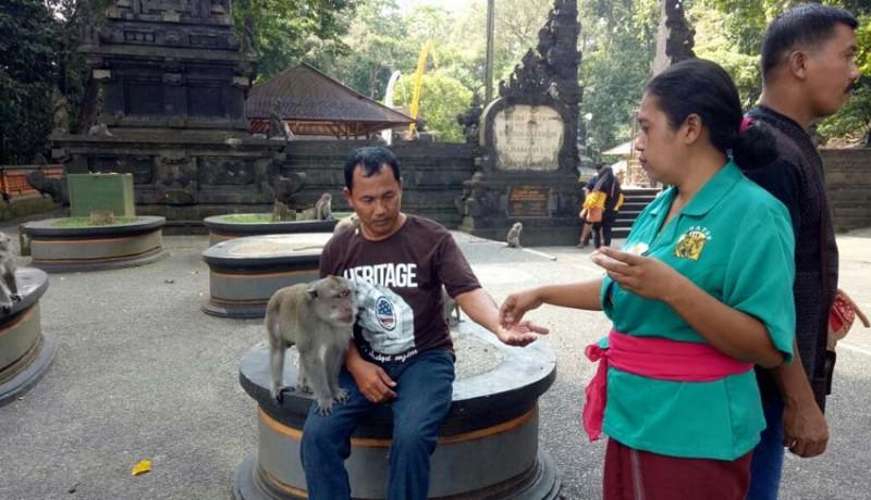 www.nusabali.com-saat-kera-ramah-wisatawan-pun-betah