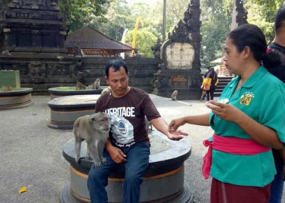 Nusabali.com - saat-kera-ramah-wisatawan-pun-betah