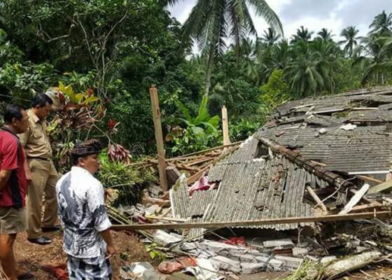 Nusabali.com - rumah-kosong-ambruk-tertimpa-pohon-waru