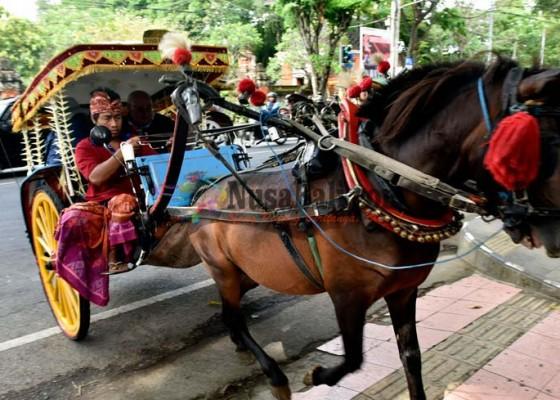 Nusabali.com - wisatawan-diajak-naik-dokar-gratis