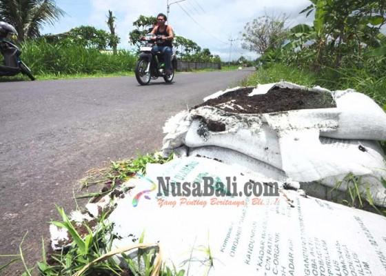 Nusabali.com - pupuk-organik-minim-peminat