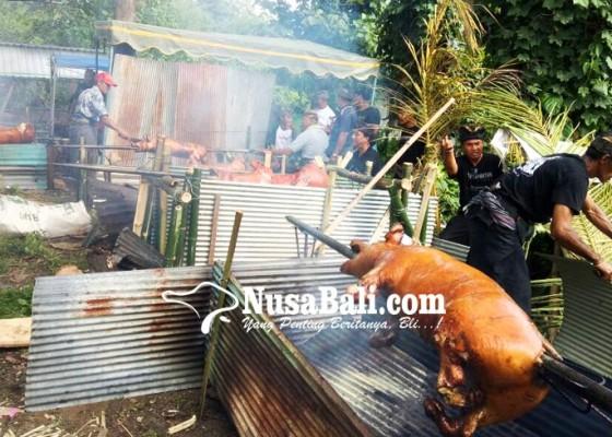 Nusabali.com - nguling-massal-meriahkan-festival-kerambitan