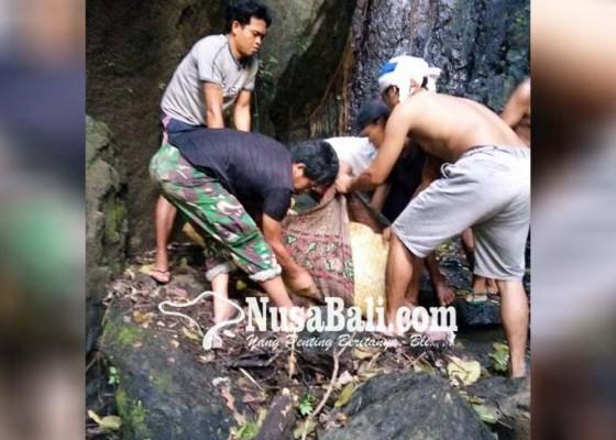Nusabali.com - duda-ditemukan-membusuk-di-jurang