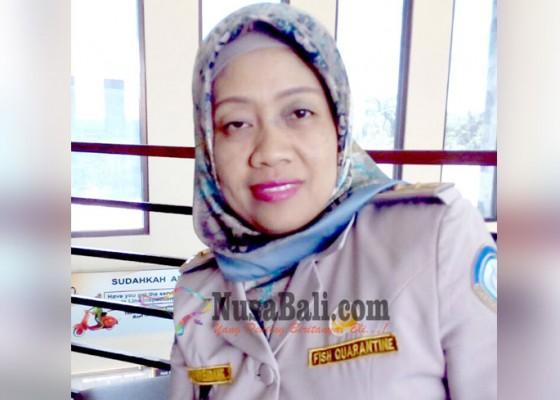 Nusabali.com - benih-bandeng-hingga-hiu-diminati-luar-negeri