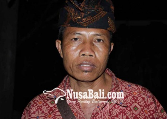 Nusabali.com - kelian-banjar-dikeroyok-saat-pimpin-pembagian-daging-babi-guling-di-pura