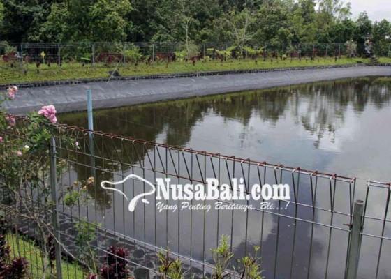 Nusabali.com - empat-embung-tak-berfungsi