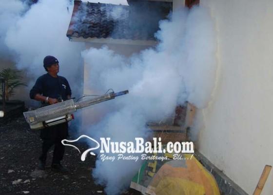 Nusabali.com - musim-penghujan-tim-fogging-mulai-dikerahkan