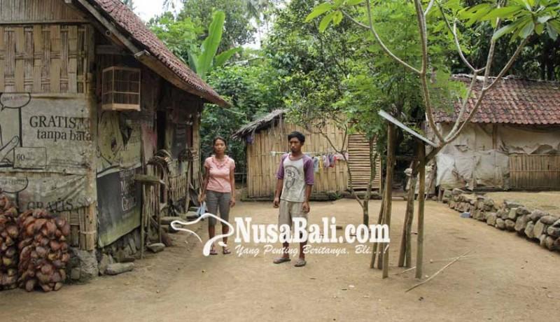 www.nusabali.com-tiga-kk-tidur-berdesakan-di-gubuk-kecil-ukuran-6-meter-x-4-meter