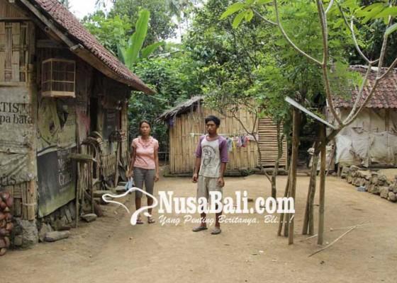 Nusabali.com - tiga-kk-tidur-berdesakan-di-gubuk-kecil-ukuran-6-meter-x-4-meter