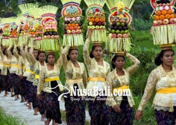 Nusabali.com - krama-bersiap-sambut-kuningan