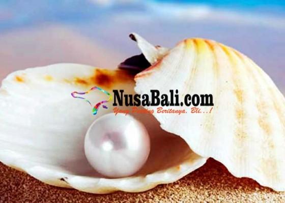 Nusabali.com - tren-penjualan-mutiara-menurun