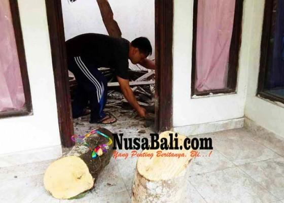 Nusabali.com - rumah-tertimpa-pohon-keluarga-pemilik-selamat