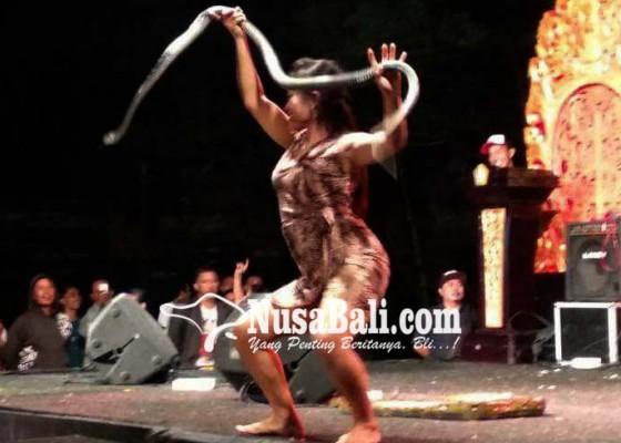 Nusabali.com - penari-ular-hebohkan-warga-marga