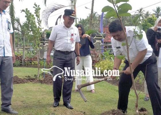Nusabali.com - pln-rayon-gilimanuk-serahkan-bantuan-1200-bibit-buah