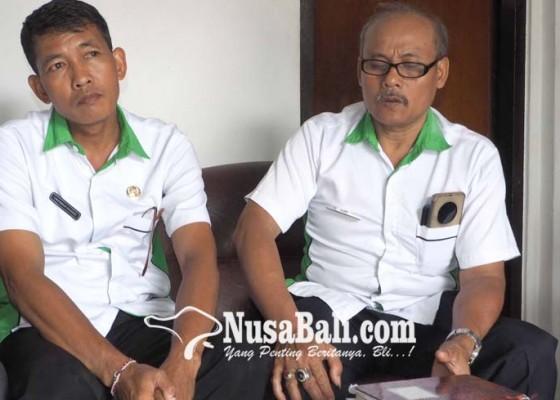 Nusabali.com - klungkung-rencanakan-angkat-145-pegawai-kontrak-baru