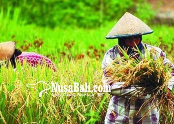 Nusabali.com - distan-bali-datangkan-motivator-gugah-kewirausahaan-petani