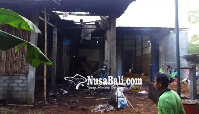 www.nusabali.com-api-nyaris-ludeskan-pabrik-pengolahan-serabut-kelapa