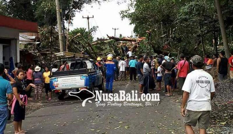 www.nusabali.com-evakuasi-korban-perlu-15-jam-jalam-macet-total-selama-3-jam