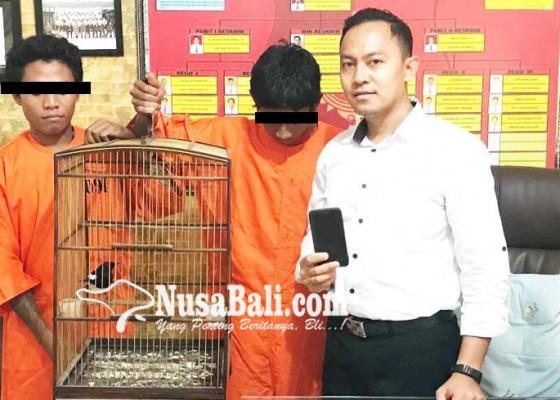 Nusabali.com - bobol-rumah-kakak-beradik-diciduk